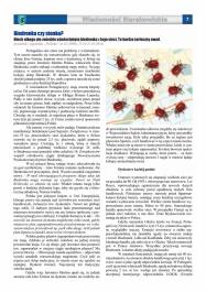 Wiadomości Sierakowickie 134 strona 7