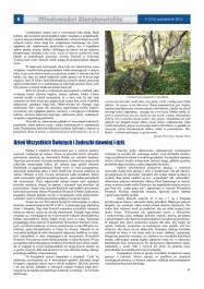 Wiadomości Sierakowickie 147 strona 8